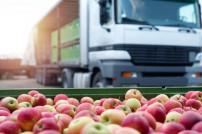 Lkw und Äpfel