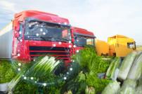 Lkw und Lebensmitteltransport