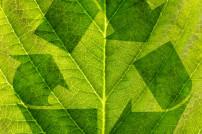Grünes Recycling Symbol